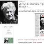 Michel dans Rolling Stones