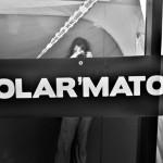 Polarmaton